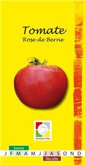 Tomate Berner rose AB Bio