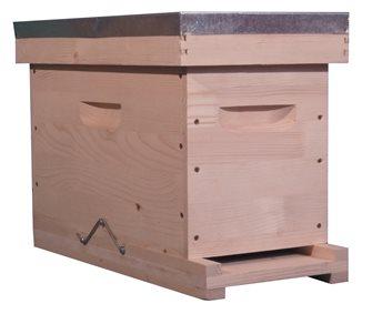 Petite ruche 5 cadres Dadant sans les cadres